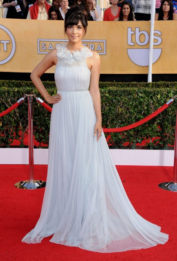 Hannah-Simone-in-Marchesa-SAG-Awards-2014